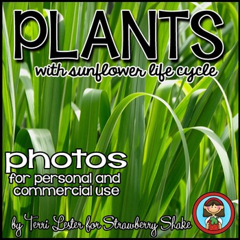 Photos Photographs PLANTS for Personal and Commercial Use