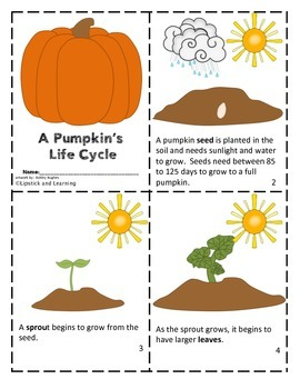 PUMPKIN LIFE CYCLE Mini Book Reader, Activity Cards, Vocab