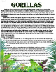 Paired Text - Gorillas - Animals - Compare and Contrast -