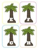 Palm Tree Capital Alphabet Flash Cards