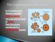 Pangaea and Continental Drift Power Point Presentation
