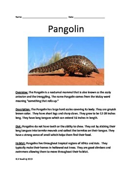 Pangolin - Review Article Questions Facts Information Vocabulary