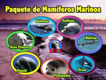 Paquete de Mamiferos Marinos - Presentaciones en PowerPoint