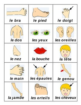 Parts of the Body  / Parties du corps French Games