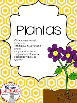 Partes de la planta