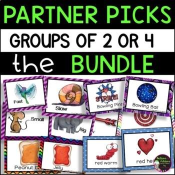 Partner Picks BUNDLE - 5 SETS of cards