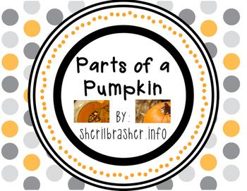 Parts Of A Pumpkin: English
