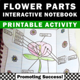 Parts of a Flower Diagram Science Interactive Notebook Fol