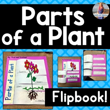 Parts of a Plant Flipbook!