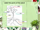 Parts of a Plant Lesson Plan