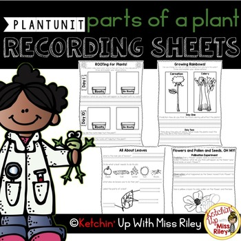 Parts of a Plant Recording Sheets