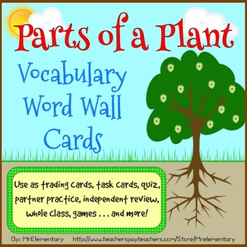 Parts of a Plant Vocabulary Word Wall