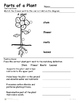 Plants - Parts of a Plant -  Plant Introduction Reading an