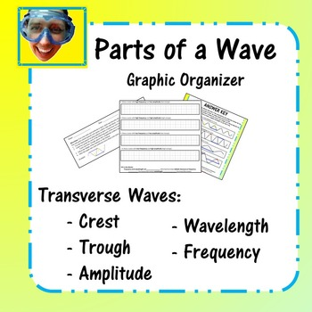 Parts of a Transverse Wave Graphic Organizer
