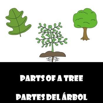 Parts of a Tree/ Partes de un arbol