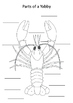 Parts of a Yabby