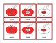 Parts of an Apple Montessori Three Part Vocabulary Cards -