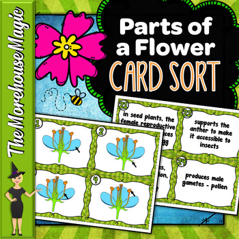 Parts of the Flower Task Cards