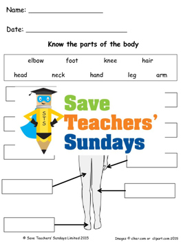 Parts of the human body lesson plan and worksheets (2 leve