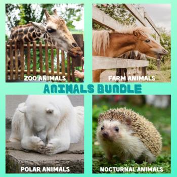 Pattern Blocks Animals Bundle