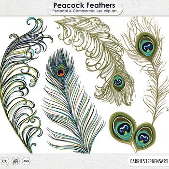 Peacock Feather Clip Art, Bohemian Bird, Elegant, Decorati