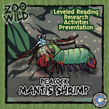 Peacock Mantis Shrimp -- 10 Resources -- Coloring Pages, R