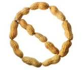 Peanut or Nut Allergy Letter to Send to Parents