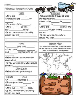 PebbleGo ~ Ants Research Graphic Organizer