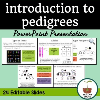 Pedigree Notes PowerPoint Presentation