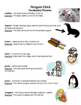 Penguin Chick Reading Street vocabulary
