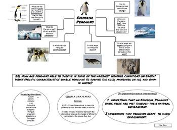 Penguin Unit Map