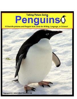 Penguins Picture Nonfiction Fact Cards