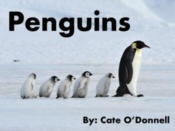 Penguins - Level D eBook for Kids