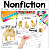 Perfectly Primary Nonfiction Articles and Close Reading SP