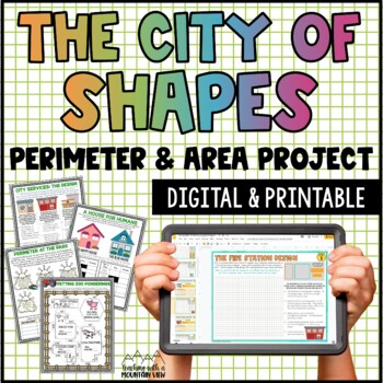 Perimeter and Area Project