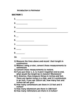Perimeter and Measurement Worksheet
