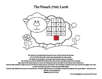 Pesah lamb 14 day.