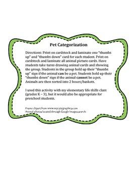 Pet Categorization Activity