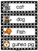 Pet Vocabulary
