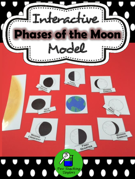 Phases of the Moon: Interactive Model