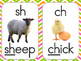 Phonics Sound Cards with Bright Pink and Green Chevron Border