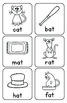 Phonics Word Family  AT Poster