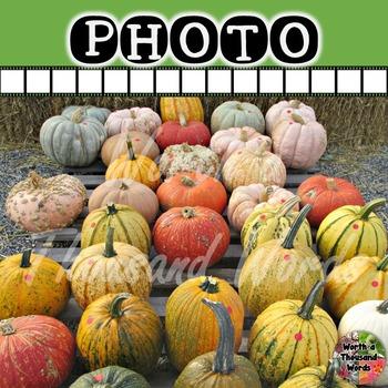 Photo: Autumn Gourds