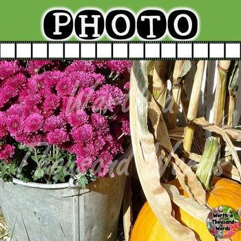 Photo: Autumn Mums and Pumpkin