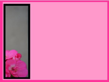 Photo Products - Mary's Garden Pink Geraniums on Pink Theme