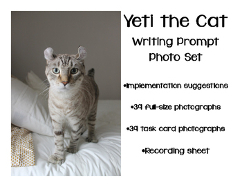Photograph Writing Prompts - Yeti the Cat Task Cards