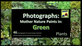 Photographs: PLANTS Mother Nature Paints in Green