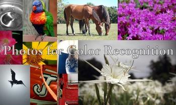 Photos : Color Recognition flash cards