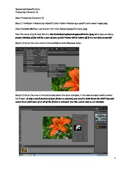 Photoshop Elements Intro Unit Lesson 3: How to Replace a S