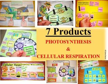 Photosynthesis & Cellular Respiration BUNDLE
